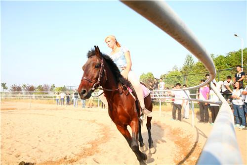 骑士白靴的美女_匈牙利美女骑士武汉高校教驯马