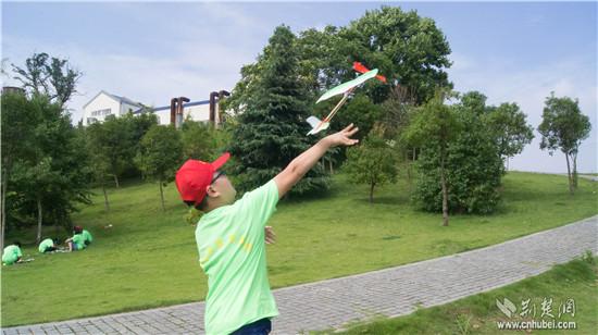 固定翼航模,扑翼飞机