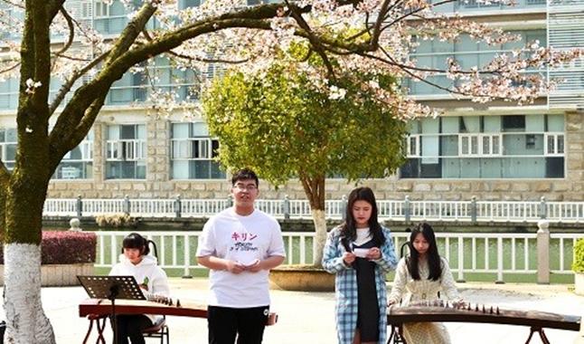 唯美!武汉一高校学子樱花树下抚琴会友品诗词